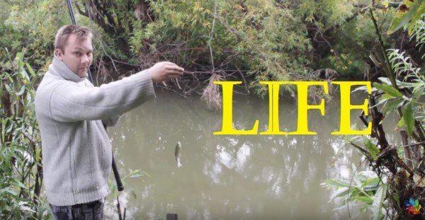 На рыбалке лето 2015г тест драйв китайских поплавков у себя на даче. Часть 1
